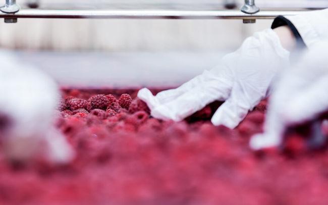 But What About Food? FDA Director Scott Gottlieb's 4-month Scorecard